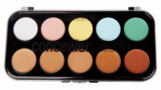 JPNK Professional 10 Colour Concealer Camouflage Makeup Palette