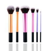 6Pcs Pro Eyeshadow Foundation Blush Cosmetic Makeup Brush Brushes Tool Set