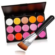 15 Colour Makeup Palette Cosmetic Gloss Lipstick Lip Blush Concealer Palette