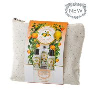 Panier des Sens 3 Piece (shower gel, lotion, hand cream) French Provence (Citrus) Travel Set in Travel Pouch