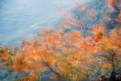 Autumn Rain Candle/Soap Fragrance Oil 30ml