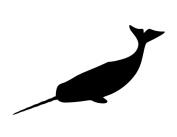 Pack of 3 Narwhal Stencils Made from 4 Ply Mat Board 11x14, 8x10, 5x7