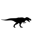 Pack of 3 Trex Tyranosaurus Stencils Made from 4 Ply Mat Board 11x14, 8x10, 5x7