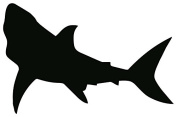 Pack of 3 Shark Stencils Made from 4 Ply Mat Board 11x14, 8x10, 5x7