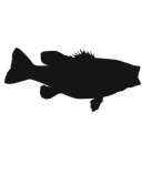 Pack of 3 Largemouth Bass Stencils Made from 4 Ply Mat Board 11x14, 8x10, 5x7