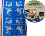 Mallard-Duck Glass Etching Stencils, Animal Series + How to Etch CD with Patterns