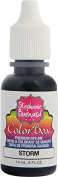 Clearsnap Holding 8227 Storm ColorBox Premium Dye Ink by Stephanie Barnard Refill Bottle, 15ml