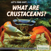What Are Crustaceans?