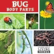 Bug Body Parts