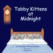 Tabby Kittens at Midnight