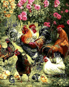 Kids Paint by Number Kits, DIY Animal oil Painting by Numbers on Canvas Cocks