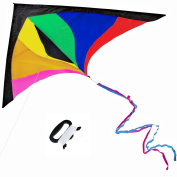 Anpro Huge Colourful Kite for Kids and Adults - Huge Size and Best Easy Flyer, Huge colourful kite with 60m/60m Flying Line