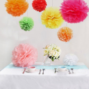 Naice Tissue Paper Pom Poms Flower Pom Poms Craft for Wedding Decoration Party Favours Pom Poms Set, 6 Warm Colours, 24Pcs of 20cm 25cm 30cm 36cm