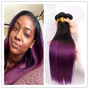 Brazilian Ombre Straight Human Hair Bundles Ombre Purple Human Hair Weft Black to Purple No Tangle 300g 46cm