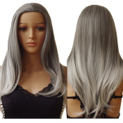 S-noilite Women 60cm Long Straight 3/4 Full Head Wigs Clip In Hairpieces Cosplay Costume Party Daily Fancy Dress Kanekalon Synthetic Grey White Mix