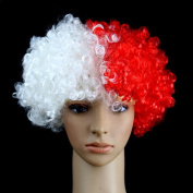 Halloween style fashion wigs supporters wigs