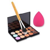 Fheaven 15 Colour Concealer Palette + Makeup Brush + Sponge Puff Makeup Contour Palette