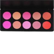 Fheaven 10 Colour Makeup Cosmetic Blush Blusher Brand New Professional Makeup