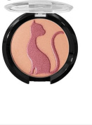 J. Cat Love Struck Glam Glow Powder in Pumpkin