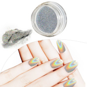 Travelmall Holo Pure Powder Holographic Bright Shinning Magic Mirror Laser Nail Powder Nail Glitter Rainbow Pigment Manicure Chrome Pigments With 2 nail brushes