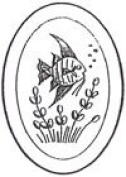 10cm x 15cm Oval Engraved Fish Premium 1.3cm Bevelled Glass - Pkg of 4
