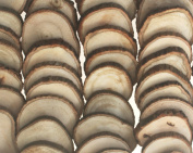 "50 Pack Unfinished Wood Slices 2-2.75"" (5-7 cm) Tree Cookies by Nesha"