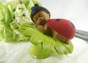 Cake Topper Centrepiece Ethnic Baby Ladybug on Green Flower