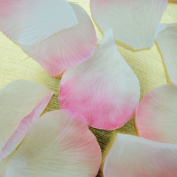 Quasimoon Light Pink Ombre Two-Tone Silk Rose Petals Confetti for Weddings in Bulk by PaperLanternStore