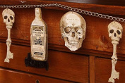 Bethany Lowe Bottles and Bones Garland