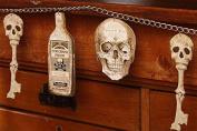 Bethany Lowe Bottles and Bones Garland
