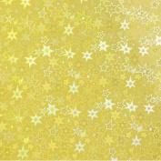 8.5x11 Paper Foil Gold Stars Self Adhesive - 2 Pcs