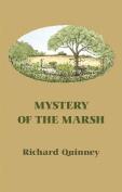Mystery of the Marsh