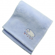 Blue Baby Bed Blanket - Soft Summer Blanket 30 x 40 Coral Velvet - Baby Shower Gift