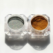 1g/Box Holographic Glitter Powder Nail Art Holo Glitter Dust Powder Nail Decoration 2 Colours