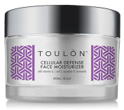 Antioxidant Moisturiser For Face With Vitamin A, C, E, Cucumber & Chamomile. Reduces Wrinkles And Fights Free Radical Damage.