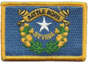 Tactical State Patch - Nevada - View Colours