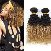 Top Hair Peruvian Omber Hair Weave Kinky Curly Virgin Hair Extensions Two Tone Human Hair Weave 3 Bundles (18 20 22) T1b/27 50g/bundle