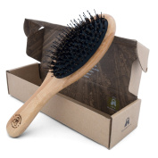 Bamboo Boar Bristle Hair Brush with Detangle Pins. Great for Hair Detangling, Pins Direct the Hair to Boar Bristles Which Make Hair Shiny and Silky, Brush comes in an Eco-Friendly Box.