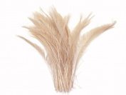 Ivory Bleached Peacock Swords Cut Wholesale Feathers (bulk) | 50 Feathers