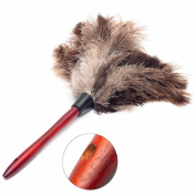 20cm Ostrich Feather Home Cleaning Duster Brush Wood Handle Anti-static Natural Grey Fur