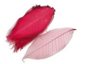 Red Skeleton Leaves 13cm Natural Colour Flower Making Natural Rubber Leaves