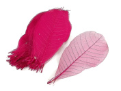Pink Magenta Skeleton Small Leaves 13cm Natural Colour Flower Making Natural Rubber Leaves