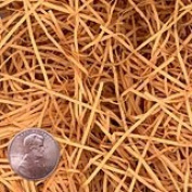 Krafty Klassics 0.2kg Cognac Fine Cut Paper Shred