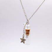 NW Mini Glass Bottle Necklace With Star Pendant Necklaces DIY Necklace Essential Oil Necklaces