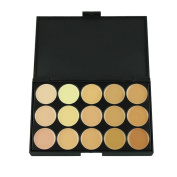 Professional Foundation Cream,Tefamore 15 Concealer Camouflage Face Highlight Makeup Palette