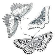 HJLWST 1PC Yimei Tattoo Stickers Waterproof Animal Series Women/Men/Adult/Boy/Teen Black The Three Butterflies 16.8cm14.3cm