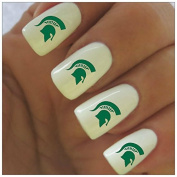 Michigan State Spartans Water Slide Nail Decals