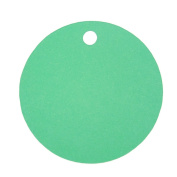 Green Blank 5.1cm Round Cardstock Gift Tags - 12 tags