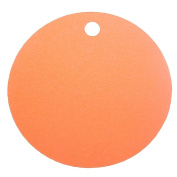 Orange Blank 5.1cm Round Cardstock Gift Tags - 12 tags
