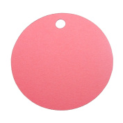 Red Blank 5.1cm Round Cardstock Gift Tags - 12 tags